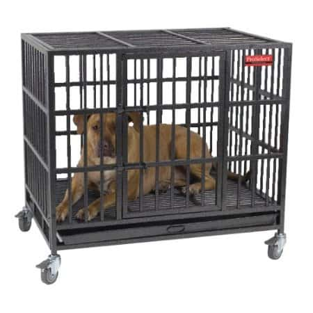 ProSelect Empire Dog Crate Review