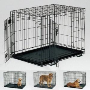 Crate Training Basics