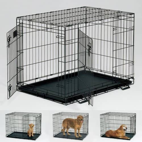 Dog Crate Training Basics To Get Your Pet Using Their Crate