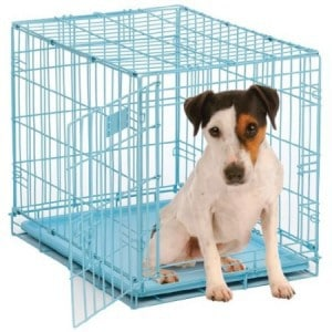 Crate Training Puppies At Night