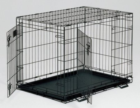 Houdini Dog Escapes Crate! How They Do It & How To Stop Them
