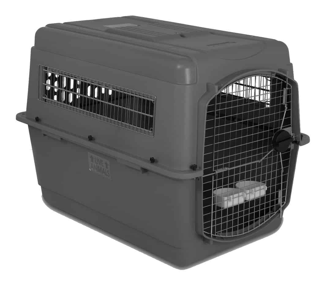 Iata Airline Approved Dog Crates Kennels For Flying With