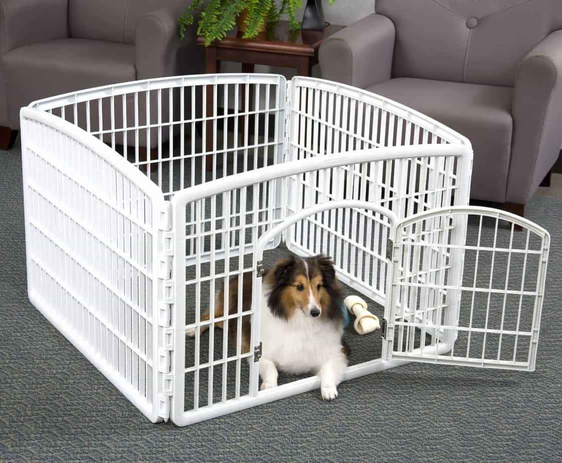 Best Dog Playpen Reviews